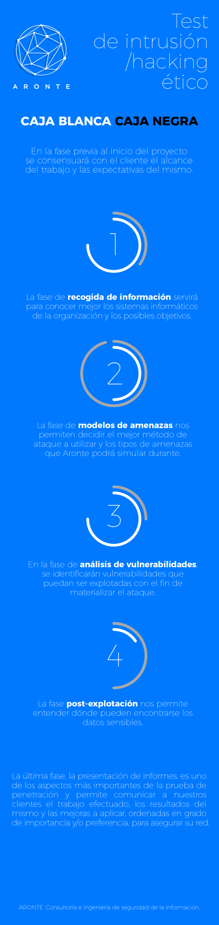 infografia_test_hacking-01